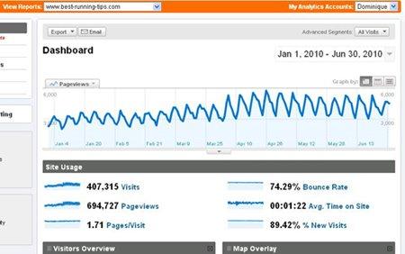 Google Analytics First Half 2010
