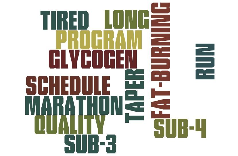infographic marathon training tips