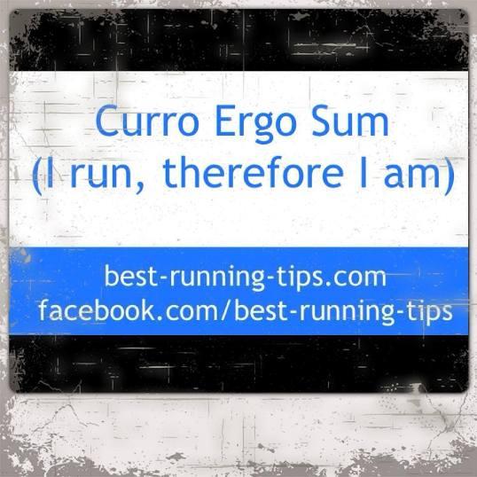 curro ergo sum -                         running quote