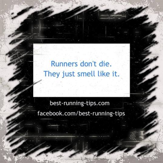 running quote - runner's don't die. they just smell like it.